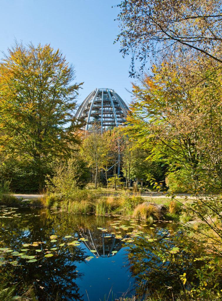 Der Baumturm des Baumwipfelpfades ist ein Aussichtsturm mit großartiger Aussicht über den Bayerischen Wald.
