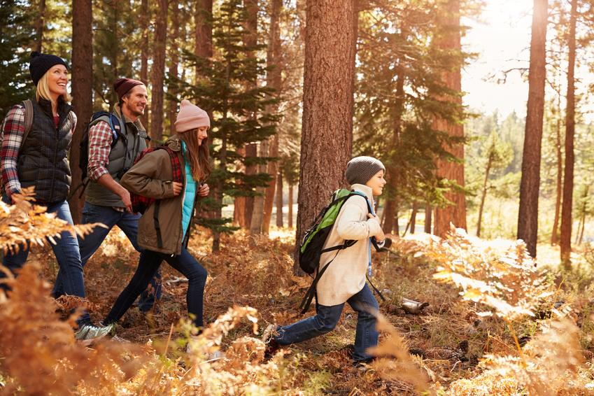 Geocaching im Bayerischen Wald: Wandern, Natur und Spaß für die ganze Familie