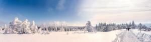 Verbringen Sie Ihren Winterurlaub im Hotel Binder in Büchlberg bei Passau: Dank der zentralen Lage erreichen Sie sowohl die wunderschöne Barockstadt Passau als auch die nahe gelegenen Wintersport-Zentren des Bayerischen Waldes, wo Sie traumhafte Winterwanderungen in der atemberaubenden Natur des Bayerischen Waldes unternehmen können.