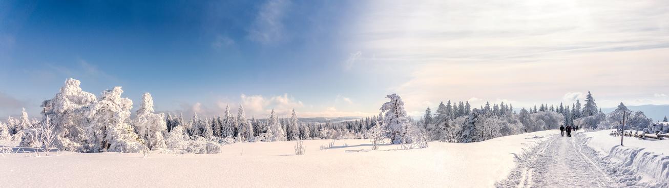 Schneeschuhwandern im Bayerischen Wald bei einem Winterurlaub im Bayerischer Wald Hotel Binder bei Passau